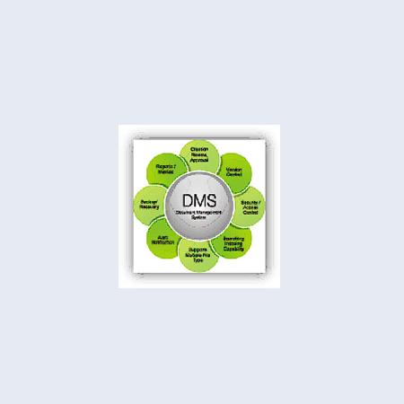 dms-2